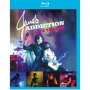 Jane's Addiction -- Live Voodoo (Blu-ray)