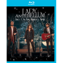 Lady Antebellum -- Live: On This Winter's Night (Blu-ray)