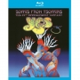 Yes -- The Song From Tsongas Special Edition (Blu-ray)