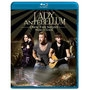 Lady Antebellum -- Own The Night World Tour  (Blu-Ray)