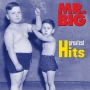 Mr. Big -- Greatest Hits (CD)